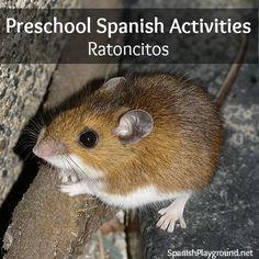 Teaching Spanish to preschoolers: Mice Spanish activities for preschool! #PreschoolSpanish stories, games, rhymes, books, crafts, songs and fingerplays about mice. #Spanishpreschool #preschoolSpanishsongs #PreschoolSpanishactivities http://www.spanishplayground.net/preschool-spanish-mouse-activities/