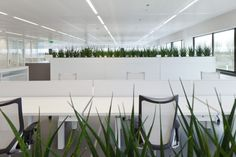 ASICS Netherlands Headquarters