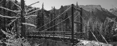 Needleton Suspension Bridge, Durango, CO. Photo: Carroll Vogel