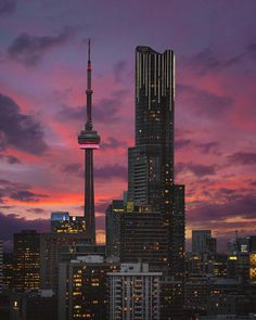 Amazing shot by bora. Little Italy Toronto, Wallpaper Toronto, Torre Cn, Downtown Toronto, Toronto Skyline, Toronto City, Toronto Ontario Canada, Seattle, Toronto Travel