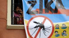 Guillain-Barré-Syndrom: Zika ist nicht für jeden harmlos - ZEIT ONLINE
