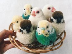 Pom poms are very cute. You can make this crafts easily! Make pom poms with children. Cute Crafts, Diy And Crafts, Crafts For Kids, Arts And Crafts, Crochet Projects, Sewing Projects, Craft Projects, Projects To Try, Craft Ideas