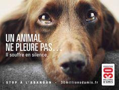Oserez-vous abandonner votre animal après avoir vu ce message choc ?