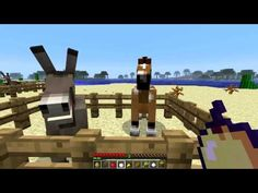 Minecraft Horses - What to feed Minecraft Horses