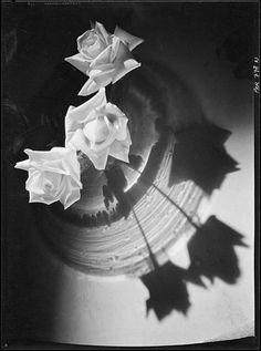 Roger Parry, Roses dans un vase avec l'ombre portée, vers 1930 Négatif noir et blanc, support pellicule Donation Roger Parry, Ministère de la culture (Médiathèque de l'architecture et du patrimoine) diffusion RMN