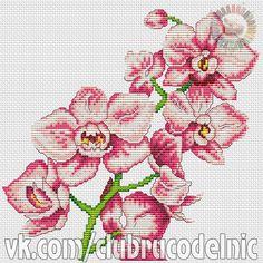 ЦВЕТЫ 2 Cross Stitch Rose, Cross Stitch Flowers, Cross Stitch Patterns, Victorian Cross Stitch, Vintage Crochet, Daffodils, Cross Stitching, Needlepoint, Orchids
