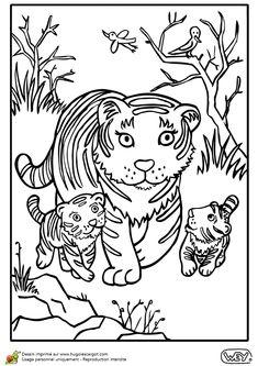 Les deux bébés tigres se baladent dans la forêt avec leur maman, coloriage pour enfants