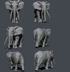 Artwork by Andres Zorrilla for CG Pro Secrets of Success with Paul Liaw Elephant Sculpture, Elephant Art, African Elephant, Elephant Anatomy, Animal Anatomy, Sculpture Lessons, Sculpture Art, Scary Animals, Modelos 3d