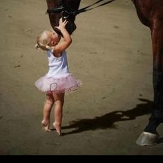 I love this. Horses are the best.