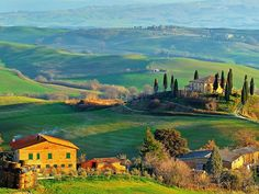 Tuscany, Italy. This view left me speechless.