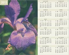 Make each day of the year a little brighter with Joys Fine Art Photographic 2015 Calendars.    Size: 8 x 10 inches Printed on Fuji Pearl Paper