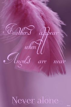 Feathers appear when angels are near. www.facebook.com/pages/Never-Alone/515465131830588
