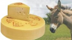 Pule (world's most expensive cheese)