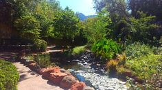 Just another magic monday... #lauberge #laubergegardens #afternoonstroll #nature #beauty #magicmonday