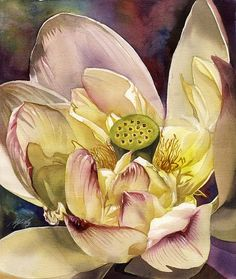 """Daily Paintworks - """"Lotus"""" - Original Fine Art for Sale - © Alfred Ng Watercolor Flowers, Watercolor Paintings, Flower Paintings, Watercolours, Botanical Illustration, Illustration Art, Thing 1, Canadian Artists, Flower Art"""