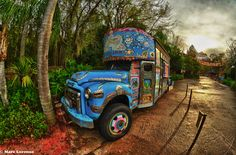 Animal Kingdom early morning HDR