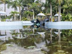 http://allday.com/post/8324-this-abandoned-water-park-has-been-reclaimed-by-the-vietnamese-jungle/pages/2/