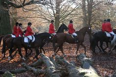 The age-old tradition of hunting goes as far back as the English language, a tradition that is entrenched within our British heritage and inextricably ...