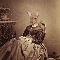 Dierdra Vintage Animal 5x7 Print Deer by AnimalFancy on Etsy, $15.00