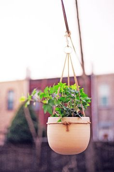 Hanging Ceramic Planter by Wilder and ClamLab