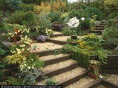 wood retaining wall on a slope Garden Yard Ideas, Backyard Garden Design, Terrace Garden, Garden Paths, Backyard Ideas, Back Gardens, Outdoor Gardens, Sleepers In Garden, Garden Stairs