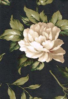 Elegant Floral on Dramatic Black Wallpaper #Brewster