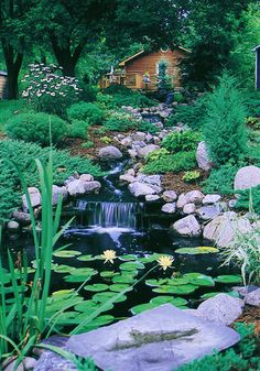Backyard waterfall and lily pond (via California Waterscapes - Waterfall Gallery - traditional - landscape - los angeles - by California Waterscapes) Bungalow Landscaping, Pond Landscaping, Pond Design, Landscape Design, Garden Design, Tableaux Vivants, Pond Waterfall, Water Features In The Garden, Traditional Landscape