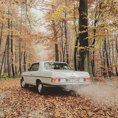My 1970 Mercedes Benz 250 CE, my 1991 Mercedes Benz 300 TE 24 and other classics - Only my photos