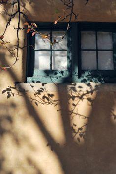 thephotographerssociety: starrysurrealism: в то время как вы не можете видеть, что есть тень нависла над, наблюдая тихо, как наша жизнь умереть-то этот фрагмент красивым фасадом позволяет оглянуться назад, когда мы воспринимаем определенную тень дерева в проекции на него. Экспозиции является превосходным здесь: тени, текстуры и цвета взяты с идеальной детализации на наших глазах. И закрытое окно всегда чудесно воспоминания .... -Juan Мануэль