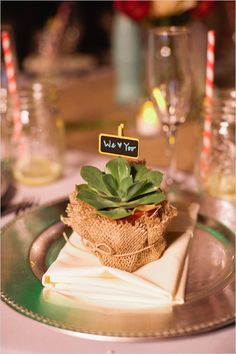 an option -- get small plastic pots (or terracotta), wrap with burlap, twine, and get something like this for name card