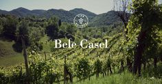 Bele Casel is located near Asolo, one of the most beautiful and historic towns in Northern Italy. Asolo is nestled on the rolling hills south of the Alps, here we find the perfect condition to grow...