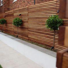 Fence Wall Design, Garden Wall Designs, Back Garden Design, Modern Garden Design, Backyard Garden Design, Landscaping Along Fence, Patio Fence, Cedar Fence, Backyard Landscaping