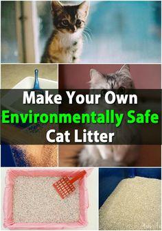 Huge Money Saver - Make Your Own Environmentally Safe Cat Litter