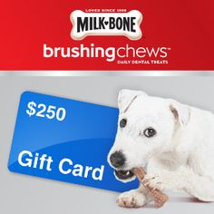 Milk-Bone® Brushing Chews® is having a sweepstakes for an awesome puppy gift basket! Check it out. #Sweepstakes #ChewsWisely
