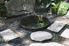 明治神宮の清正井