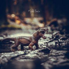 #dinosaur #dinosaurs #jurassicpark #jurassicworld #dino #trex #art #paleontology #jurassic #dinosaursofinstagram #prehistoric #tyrannosaurusrex #jurassicworldfallenkingdom #velociraptor #paleoart #dinosaurios #fossil #jurassicworldevolution #nature #raptor #animals #tyrannosaurus #drawing #cretaceous #triceratops #toys #toyphotography #spinosaurus #reptiles #bhfyp Toys Photography, Photography Ideas, Dino Trex, Jurassic World Fallen Kingdom, Spinosaurus, Tyrannosaurus Rex, Jurassic Park, Prehistoric, Reptiles