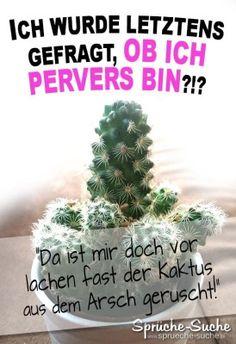 lustiges Spruchbild mit Kaktus