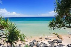 Coolangatta Beach, Queensland, Australia -- at the southern end of the Gold Coast, but only a short drive from the rain forest. I REALLY want to go here: my first choice!!!!