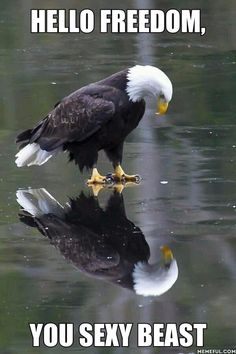 Mirror, Mirror, on the Wall, Whose Country Is Freest of Them All