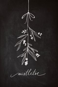The mistletoe I won't be kissed under this year.