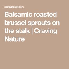 Balsamic roasted brussel sprouts on the stalk | Craving Nature