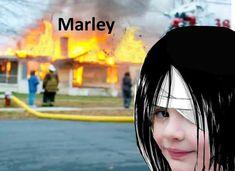 Anime Meme, Anime Ai, Manga Anime, Funny Anime Pics, Otaku Anime, Eren Aot, Armin, Manado, Attack On Titan Meme