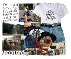 539->Roadtrip by dimibra on Polyvore featuring RE/DONE, Topshop, Retrò, Dr. Martens, Chicnova Fashion, FRUIT, Moleskine, Leica, red and denim