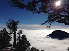 November 2013, once-every-10-years event occurred at Grand Canyon, Arizona, USA: entire canyon was filled with fog. The phenomenon is known as 'temperature inversion'. Warm air acts as a lid to seal cool air near the ground, trapping fog in the canyon. According to National Weather Service, this happens most often during winter, when long nights allow air near the Earth's surface to become unusually cold. Photo by National Park Service via Grand Canyon National Park on Facebook