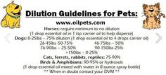 Dilution of essential oils for pets    NIKIHAZE YL#: 2421419 Young Living Distributor   Feel free to message me about essential oils or becoming a wholesale member! (You get a 24% discount!)