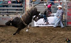 Grants Pass, Oregon Rodeo. Please don't edit, crop, or take off the watermark. thanks