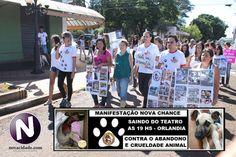 Protetores realizam manifesto em repúdio aos maus-tratos de animais em Orlândia