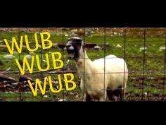 Skrillex - Bangarang ORIGINAL Goat Version song, one of the best  Uploaded on 23/02/2013  (Skrillex and the Goat)  Goat edition song  поющая коза