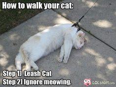 cats always get an attitude...