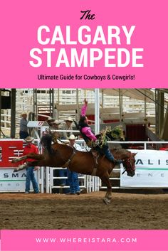 """Calgary Stampede - EVERYTHING you need to know about the """"Greatest Outdoor Show on Earth""""."""